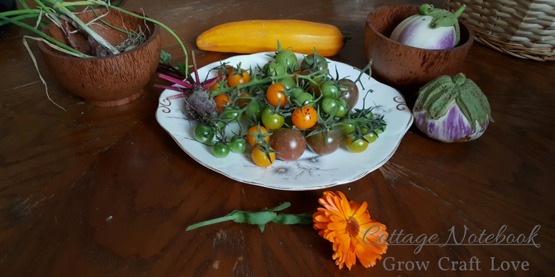 Grow | Autumn Harvest