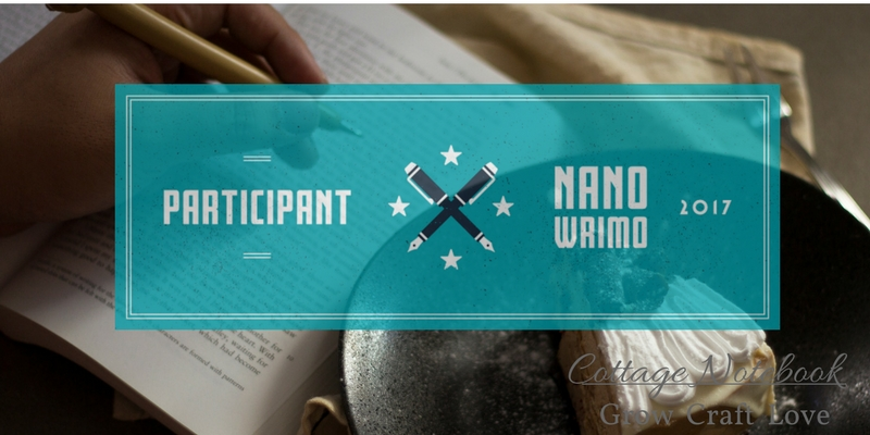 Love | NaNoWriMo and the Emotional Barrier