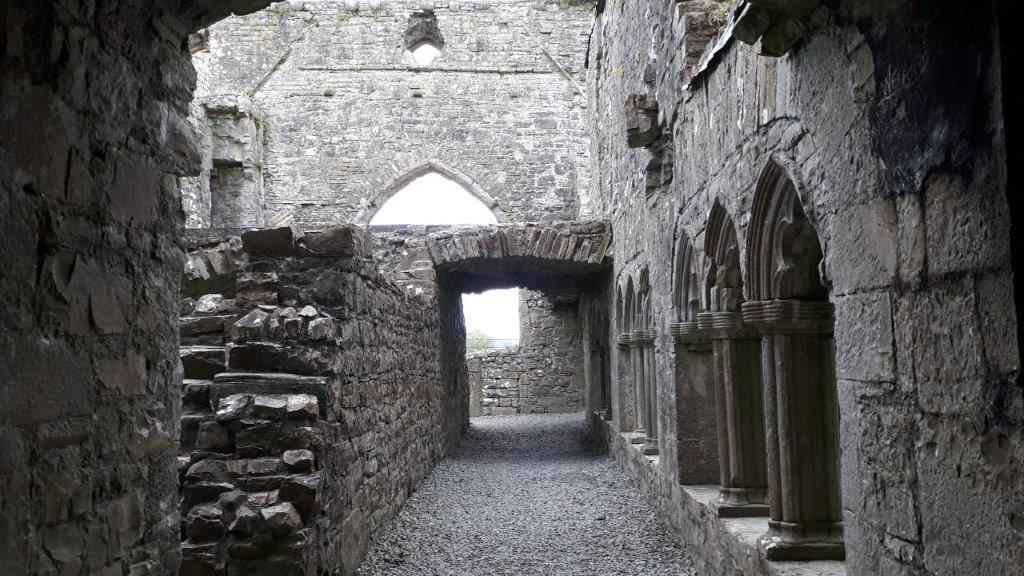 Bective Abbey co. Meath by Nadia Seaver